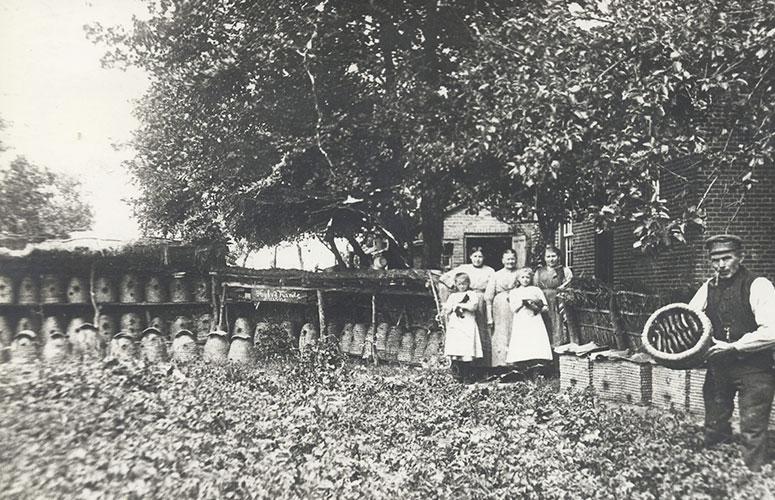 historie včelaření